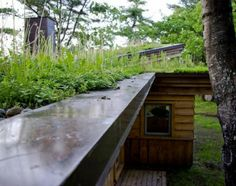 green roof on re-modeled camp house