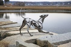 Greyhound - 2014 - Chris Williams Sculpture