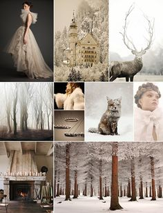 Winter Forest Inspiration Board | Camille Styles