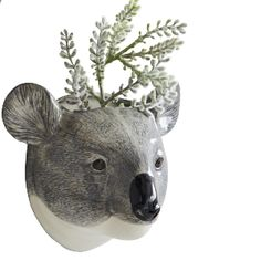 Quail Ceramics Koala Animal Head Wall Vase: Quirky ceramic bear head wall vases for plants, flowers or anything you like - kitchen utensils or even pens and pencils. A Quail Ceramics home accessory which comes in a biodegradable box.