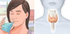 La tiroides es una glándula importantísima dentro de nuestro organismo. De hecho, las hormonas producidas por esta pequeña glándula son responsables en buena parte, de la metabolización de los carbohidratos y las grasas. Cuando la tiroides no secreta suficiente cantidad de hormonas, se produce el hipotiroidismo.