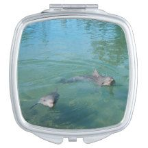 Dolphin_Play_Time,_Ladies_Square_Compact-Mirror. Travel Mirrors
