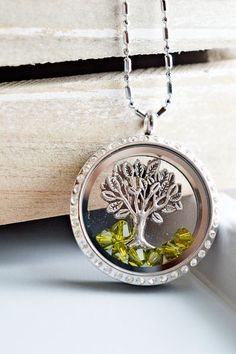 Living Locket Memory Glass Locket Jewelry,Stainless Steel Locket Pendant,Family Tree of Life Locket Necklace,Tree Charm Floating Locket Necklace,Memoir Necklace,Gift for Her,Romantic,Unique Gift,Graduation Gift,Bridesmaid Gift