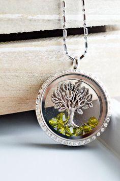 Living Locket Memory Glass Locket Jewelry,Stainless Steel Locket Pendant,Family Tree of Life Locket Necklace,Tree Charm Floating Locket