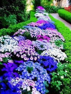 Twitter / ImanNaim3: Patchwork beautiful #flowers ...