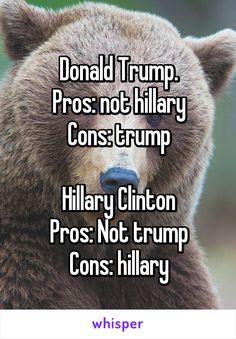 Donald Trump. Pros: not hillary Cons: trump  Hillary Clinton Pros: Not trump…