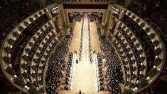 Das Jungdamen- und Jungherrenkomitee bei der Eröffnung des Opernballs (Bild: APA/HERBERT NEUBAUER) Chandelier, Ceiling Lights, Lighting, Decor, Culture, Amazing, Pictures, Candelabra, Decoration