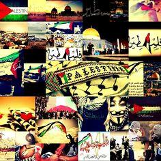 Palestine♡♡♡♡♡♡♡
