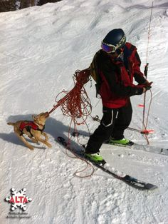 Alta patrol and Prim, the newest member of the patrol dog team. Friends and puppies and skiing!