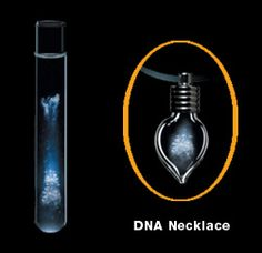Not for the faint-hearted. a DNA necklace from your very own cells!