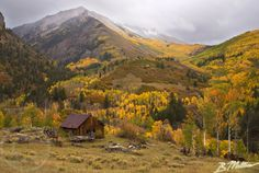 Fall in Colorado & exactly how today looks but with flurries falling down :)