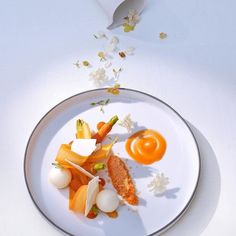 Fermented carrot with Camembert by @thomasbuehner  Tag your best plating pictures with #armyofchefs to get featured.  #plating #chefs