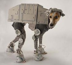 AT-AT Star Wars Dog Costume. I want to do this to my Grey Hound.
