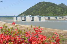 Nakdong river _ Beautiful waterside