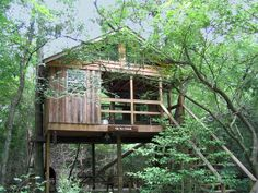 Edisto River treehouse camping and wildlife refuge in South ...