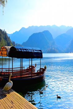 Traditional Pletna boats in Lake Bled Slovenia that will take you to the island in the middle of the lake.