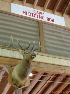 Elmo the Elk at Camp Medicine Bow's Rathom Lodge at Yawgoog.  A 2014 image by avid R. Brierley.