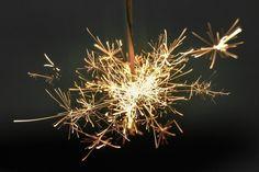 grass branch light plant photography flower sparkler firework spark lighting flora twig close up macro photography