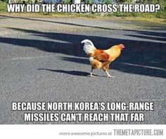 The reason the chicken cross the road…