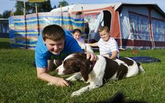 Spend time with your Dog at the Caravan Holiday Park - Xtend Outdoors Caravan Holiday Parks, Caravan Parks, Forest Glen, Good Buddy, Quality Time, Your Dog, Outdoors, Vacation, Dogs