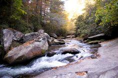 North Carolina Photo © M.J. Photography. All Rights Reserved. http://www.mjphotographyTN.com/  #mjphotographyTN