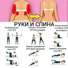 Gym Workout For Beginners, Gym Workout Tips, Abs Workout For Women, Workout Videos, At Home Workouts, Video Chat, Yoga Anatomy, Body Training, Help Losing Weight
