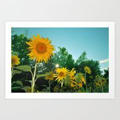 Sunflower Art Print by Guido Montañés - $20.00