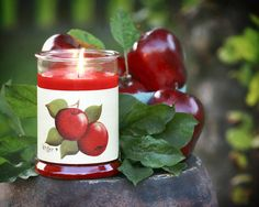 Large Apple Delicious Candle Wrap #15 www.thisilldocreations.com