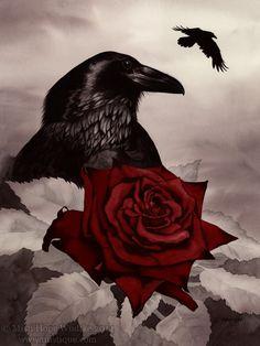 The Rose and the Raven by MistiqueStudio.deviantart.com on @deviantART
