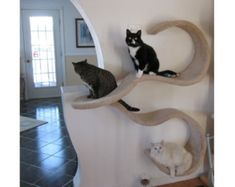 Wonderful Wall Mounted Cat Shelf, The DOUBLE WAVE Awesome Ideas