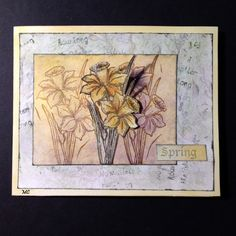 Chocolate Baroque - Spring Bird Daffodil Rubber Stamp