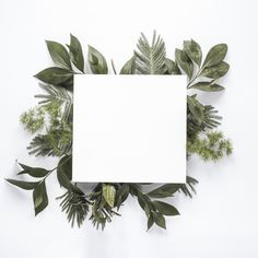 Small paper on green plant branches on table Free Photo Plant Background, Flower Background Wallpaper, Flower Backgrounds, Wallpaper Backgrounds, Wallpapers, Wedding Invitation Card Design, Floral Invitation, Wreath Watercolor, Floral Watercolor