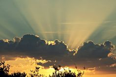 Good Morning, Sun by buggus