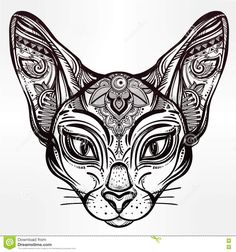 Vintage Ornate Cat Head With Tribal Ornaments. - Download From Over 53 Million High Quality Stock Photos, Images, Vectors. Sign up for FREE today. Image: 71670748