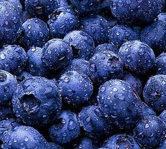 Blueberry Syrup canning recipe