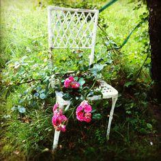 Garden Accessory