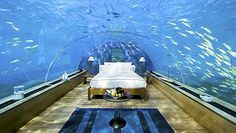 underwater bed...some would say way cool but I couldnt deal!