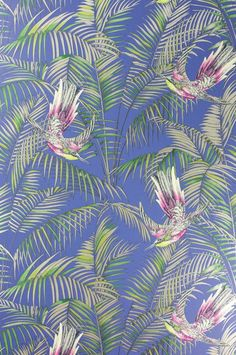 Sunbird Wallpaper A delightful wallpaper designed by Matthew Williamson featuring colourful exotic birds darting between rich foliage in fuchsia, green and metallic gilver on an electric blue background.