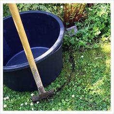 Making a Mini Garden Pond