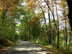 Title  Early Autumn Drive  Artist  Jean Macaluso  Medium  Photograph - Photography