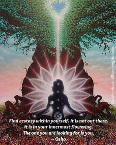 Find Ecstasy Within Yourself. It Is Not Out There. It Is In Your Innermost Flowering. The One You Are Looking For Is YOU. ~Osho