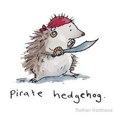 Pirate Hedgehog