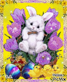See the PicMix Rabbit rest on flowers. belonging to StellaStai on PicMix. Happy Easter Gif, Happy Easter Quotes, Just Magic, Easter Pictures, Cellphone Wallpaper, Jelly Beans, Happy Valentines Day, Pet Birds, Holiday Cards