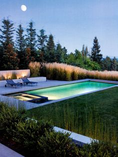 There is something quite appealing yet subtle in this pool and spa design. The Miscanthus right up to the pool edge has such a strong, softening presence in the landscape. Pinned to Pool Design by Darin Bradbury of BASK Design. Swimming Pool Landscaping, Swimming Pool Designs, Landscaping Ideas, Backyard Landscaping, Amazing Swimming Pools, Cool Pools, Pool Spa, Modern Pools, Beautiful Pools
