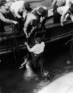 EASTLAND: The men assisted victims onto nearby tugs for safety and aftercare. Chicago River, Chicago City, Chicago Style, Chicago Illinois, Titanic Underwater, Great Lakes Ships, San Francisco Earthquake, Port Huron, Armada