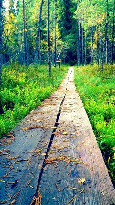Seitseminen National Park http://www.luontoon.fi/seitseminen