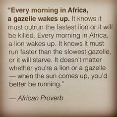 Every morning in Africa, a Gazelle wakes up. It knows it must run faster than the fastest Lion or it will be killed. Every morning a Lion wakes up. Africa Quotes, Good Morning Beautiful Images, Motivational Quotes, Funny Quotes, Running Quotes, Powerful Quotes, How To Run Faster, True Words, Great Quotes