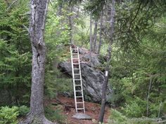 Ladder on the Massachusetts Appalachian Trail. Will hike this one day! Thru Hiking, Hiking Tips, Camping And Hiking, Appalachian Mountains, Appalachian Trail, Camping Activities, Camping Hacks, Backpacking Trails, Backpacking Light