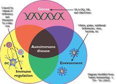 Gluten & the Autoimmune Disease Spectrum: New Research Links Gluten Sensitivity to Multiple Autoimmune Diseases