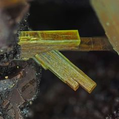 Arsenuranospathite, Al[(UO2)(AsO4)]2F(H2O) 20,  Krunkelbach Valley, Menzenschwand, Baden-Württemberg, Germany. Excellent, tabular yellow crystals of rare arsenuranospathite on matrix from probably the best locality for the species